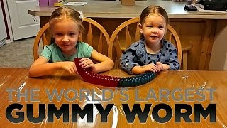 World's Largest Gummy Worm Candy Challenge | 10,000 Subscribers!