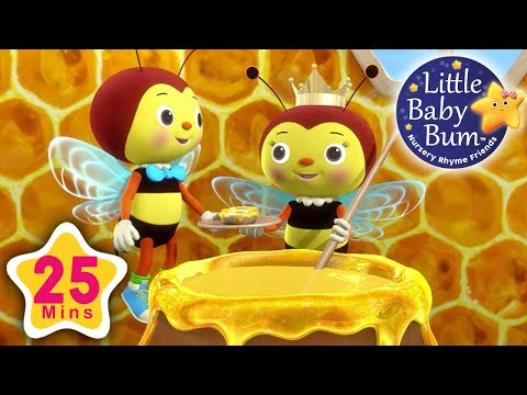 Little Bee Song   Plus Lots More Nursery Rhymes   25 Minutes Compilation from LittleBabyBum!