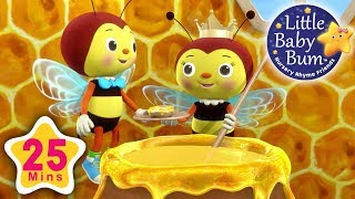 Little Bee Song | Plus Lots More Nursery Rhymes | 25 Minutes Compilation from LittleBabyBum!
