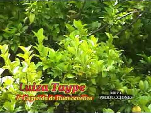 MIX LUIZA TAYPE