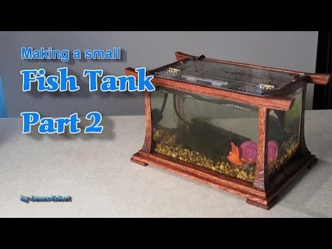 Smallest fish tank in the world