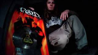 Watch Tribal Seeds Warning feat Sonny Sandoval video