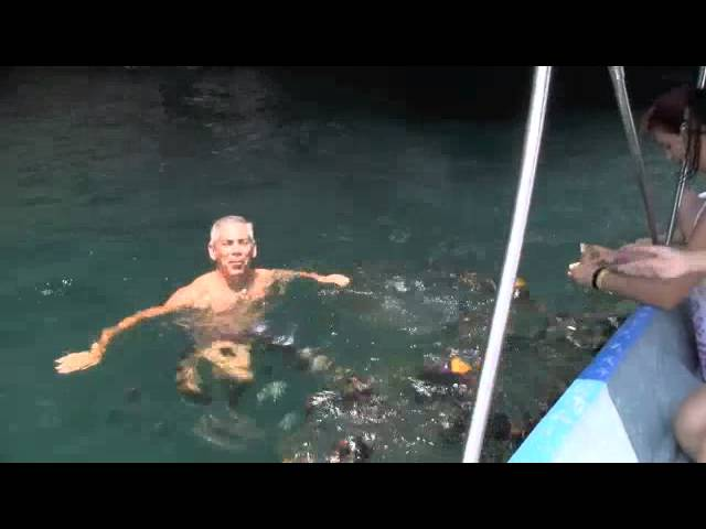 Disfruta Tu Vida y Tu Negocio de Multinivel - Roberto Perez Puerto Vallarta MX mlm