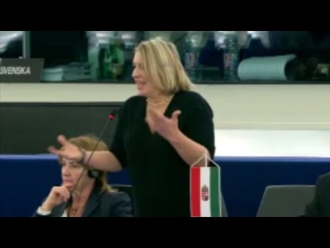 A lett elnökség programja - Plenáris vita