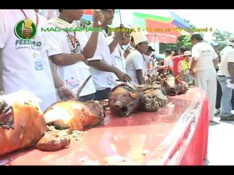 GorillaPosition.com - Babuyang Walang Amoy/Natural Hog Raising; Dagupan's Best Special Lechon Part 3
