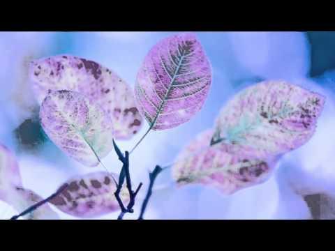 六字大明咒(輕鬆版) Om Mani Padme Hum(Relaxed Version)- 黃慧音 Imee Ooi