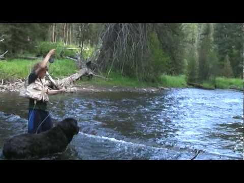 Fly Fishing Southwest Montana 2009.