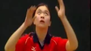 Kỹ thuật đánh bóng chuyền hơi (da)