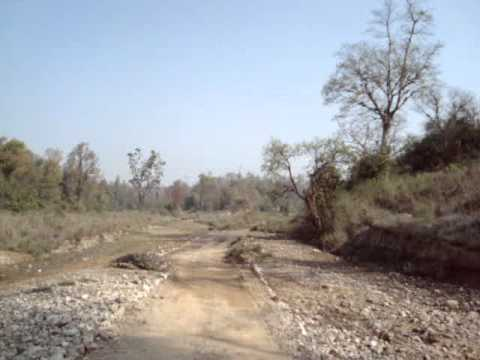 Jeep Safari in Rajaji National Park, Haridwar, Uttrakhand - India Travel & Tours Video