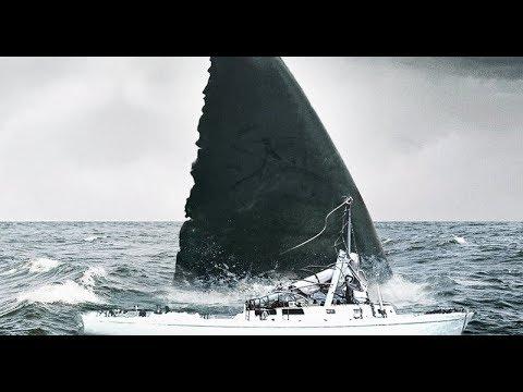 Мегаладона,длиной 40 м ,обнаружили на дне Марианской впадины.Доисторические  животные,которые выжили