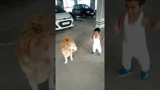Cute boy playing with dog!!