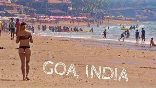GOA IS WILD   Travel India