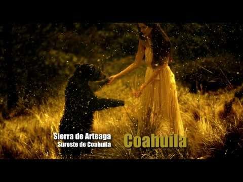 Coahuila Sierra de Arteaga 1'20
