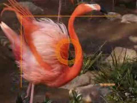 上野動物園の動物たち