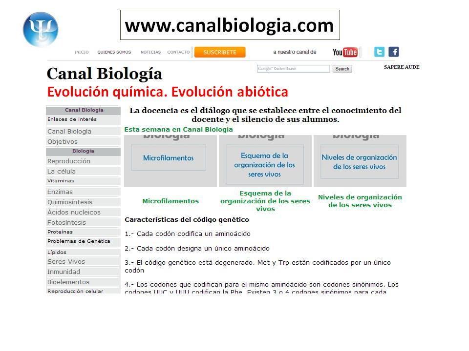 Evolucion Quimica Abiotica la Vida Evolución Química