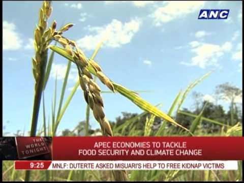 APEC economies to tackle food security, climate change