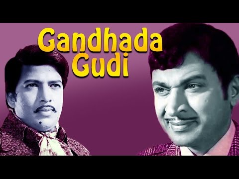 Gandhada Gudi 1973: Full  Kannada Movie