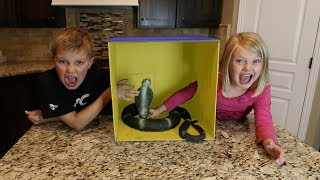 WHAT'S IN THE BOX CHALLENGE!! | LiVE ANiMAL!
