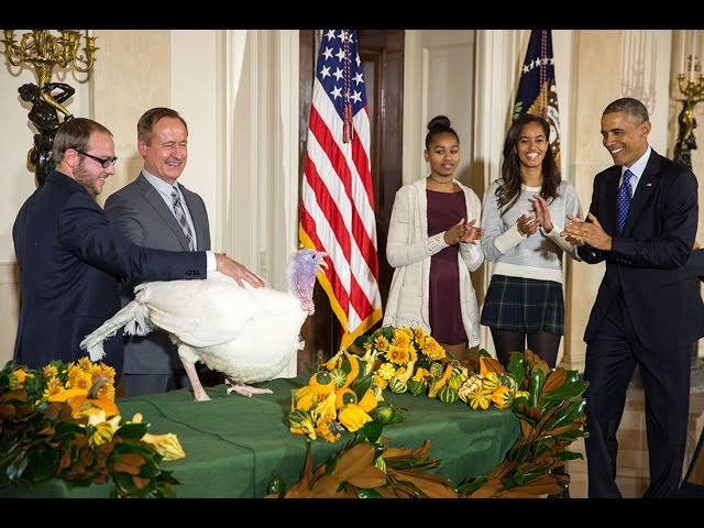 President Obama Pardons the National Turkey