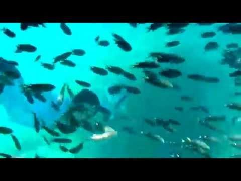 Karachi water sports club snorkeling trip at churna island