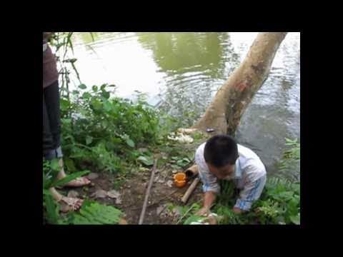 Câu cá ở Yên Bái