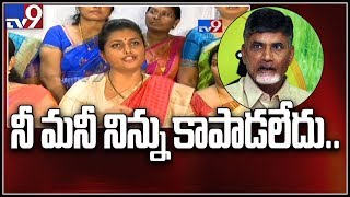 MLA Roja sensational comments on Chandrababu Naidu, Revanth Reddy