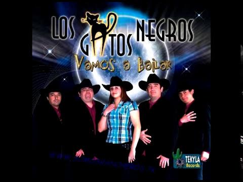 01-Los Gatos Negros - El Oso Polar