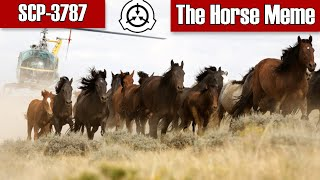 SCP-3787 The Horse Meme   Object Class Archon   animal / hostile / cognitohazard scp