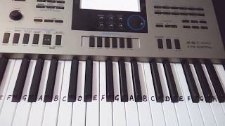 Dagabaaz Re On Keyboard Piano- Very Easy Tutorial for Beginners