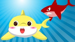Baby Shark Song Nursery Rhymes Song For Children