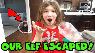 Elf On The Shelf Escaped Quarantine! Ellie Sparkle Is MISSING!
