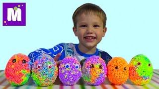 Животные заводные сюрприз из шарикового пластилина игрушки
