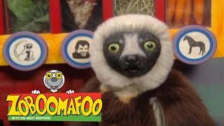 Zoboomafoo 214 - Bovine (Full Episode) | Cute Animals | Cute Pets