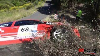 Rallye du Printemps 2017 | Crashes, Mistakes & Full Attack | ADRacing