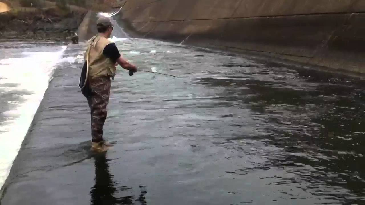 Fly fishing the lower mt fork river in oklahoma youtube for Broken bow fishing report