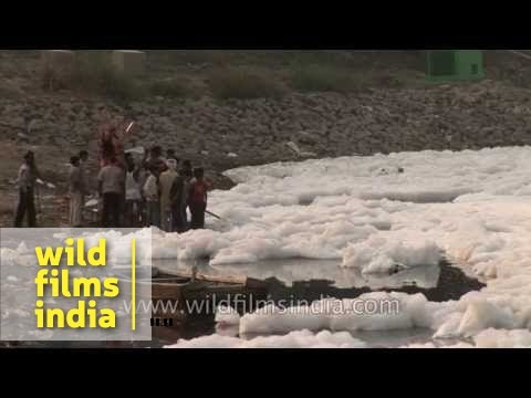 Industrial foam and riverine pollution wells up in Yamuna river near Delhi