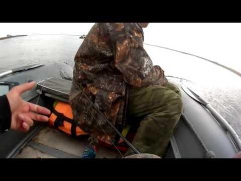 рыбалка на чехонь на волге