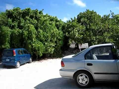 Video showing the walk to Allamanda Guest House, Anguilla