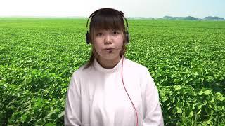 【FDNニュース】ハツカダイコンを収穫