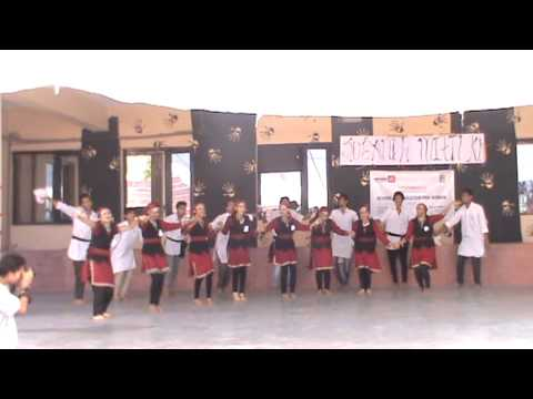 Nati(himachali Dance) video