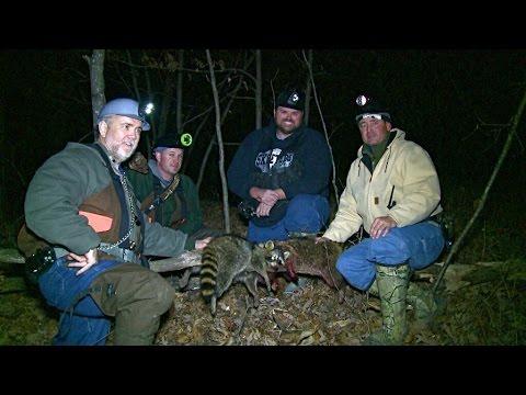 Adventures of Raccoon Hunting