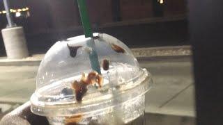 First Starbucks part tow