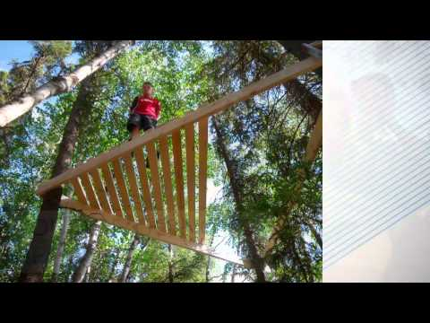 Design and Build Your Own Tree House - YouTube
