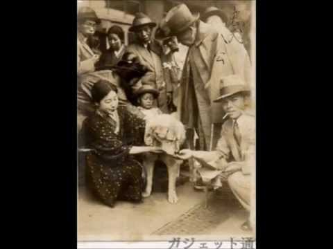 Life And Death Of Hachi - Lost And Very Rare Photos - video