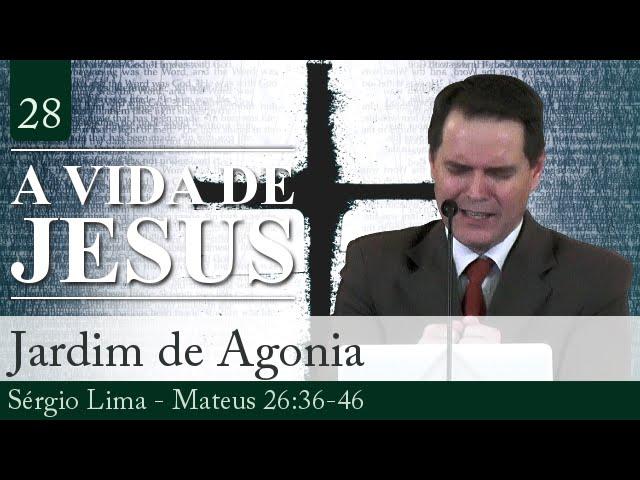 28. Jardim de Agonia - Sérgio Lima