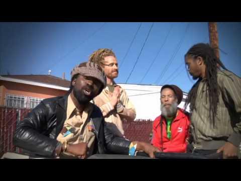 African Reggae Fever