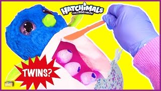 Birth of Twin Hatchimals CollEGGtibles Surprise Eggs Game Hatchimals Toy Opening for Kids