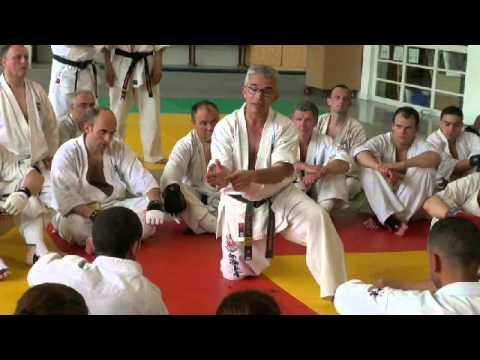 Shinkyokushinkai French séminaire 2013  Shihan Jesus Talan Part 2 Image 1