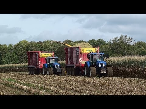 Mais Hakselen 2017 : Herens / New Holland FR9060 / New Holland T7 / Pöttinger Jumbo