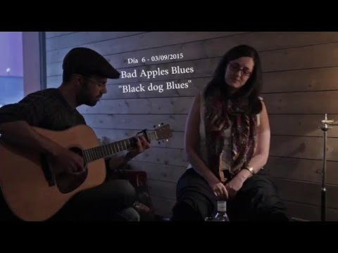 BLACK DOG BLUES (Blind Blake) acoustic music live video by Bad Apples Blues: lyrics & notes